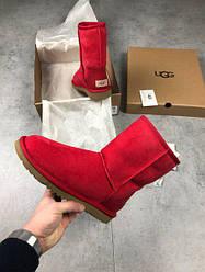 Женские зимние сапожки UGG High (Угги высокие) красные