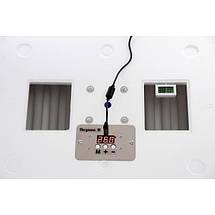 Инкубатор автоматический Несушка - М , 12/220 В, Люкс , ( Экспортный вариант ), вентилятор + влагомер, фото 3