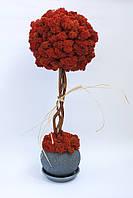 Стабилизированное дерево Tree of mini
