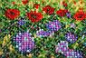 """Набор для вышивания бисером на холсте """"Дикое поле"""", фото 3"""