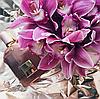 Женская туалетная вода Tom Ford Orchid Soleil[реплика], фото 2