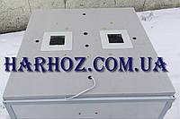 Инкубатор Курочка Ряба ИБ-80 автомат на 80 яиц , ТЭН, таймер, фото 1