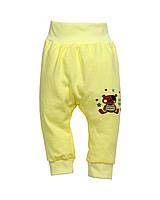 """Штанишки  для  малышей """"Мишка Тедди"""" кулир разм. 56, 62, 68"""