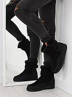 Черные женские ботинки утепленные F176P 37