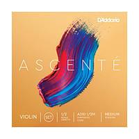 Струны для скрипки D`ADDARIO A310 1/2M Ascenté Violin Strings 1/2M