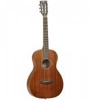 Вестерн гитара TANGLEWOOD TW133 ASM PARLOUR