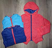 Куртки на девочек оптом, Jump & Fish, 116-140 см,  № 15-953B