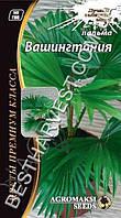 Семена Пальмы декоративной «Вашингтония» 5 семян