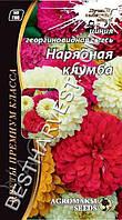 Семена цветов Циния «Нарядная клумба» смесь 0.3 г