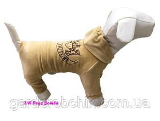 Велюровый комбинезон, костюм для собаки D-30. Одежда для животных