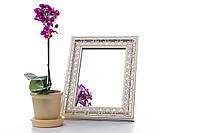 Зеркало в багете, зеркала настольные, зеркала настенные, зеркало с подставкой, 317-65