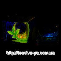 Интенсивный крем-лифтинг ОМЕГА 3+6 — LIFTING CREAM OMEGA 3+6, 50мл