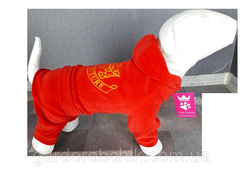 Велюровый комбинезон, костюм для собаки D-7. Одежда для животных
