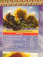 Семена Подсолнечника Рекольд под Гранстар
