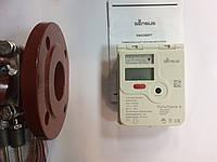 Комплект Турбинный счетчик горячей воды  WP-Dynamic 65/150 SENSUS + тепловычислитель