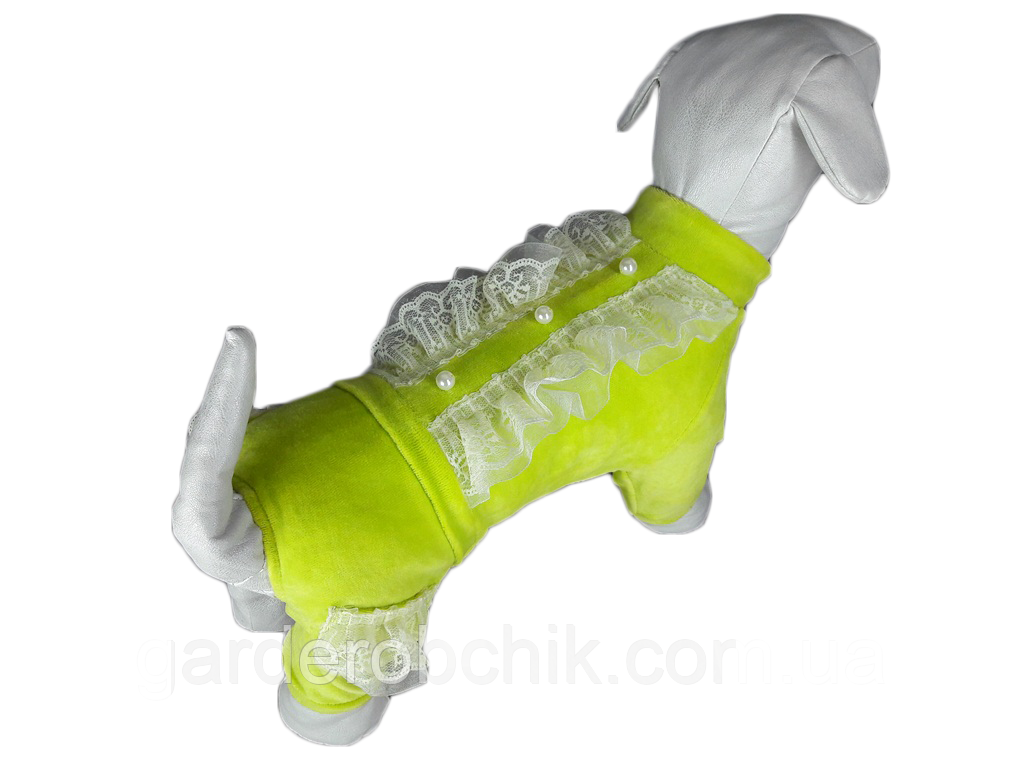 Велюровый комбинезон, костюм для собаки D-18. Одежда для животных