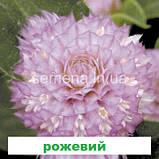 Гомфрена Будді 200 шт. (колір на вибір), фото 2
