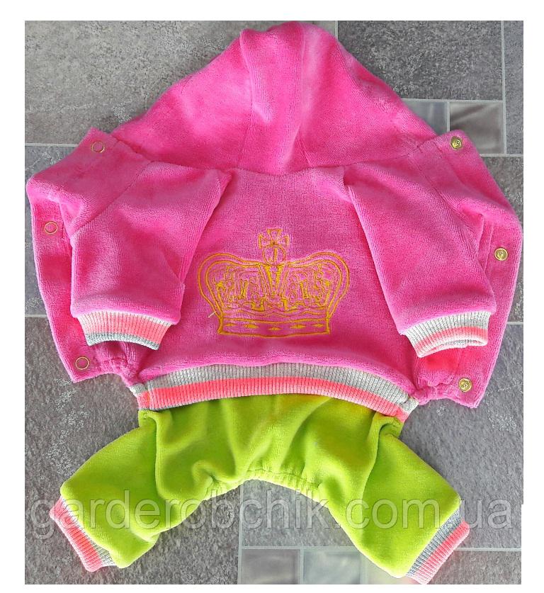 Велюровый комбинезон, костюм для собаки D-9. Одежда для животных