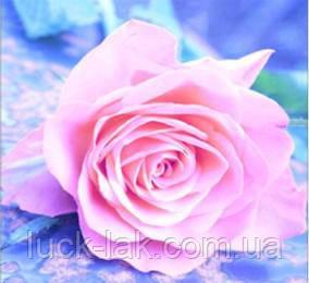 Алмазная вышивка, роза, 30х30 см