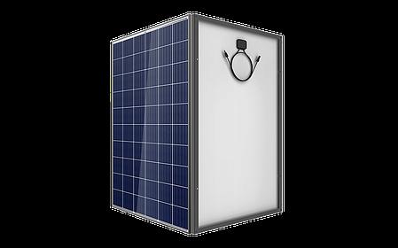 Солнечная батарея Trina Solar TSM-270PD05 5BB, 270 Вт (поликристалл), фото 2