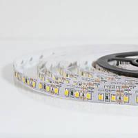 Светодиодная лента SMD3528-12-120-WW теплая белая IP20 Econom