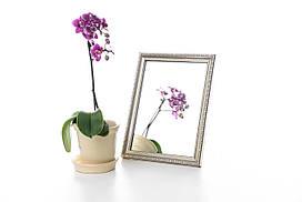 Копия Зеркало в багете, зеркала настольные, зеркала настенные, зеркало с подставкой, 1713-4