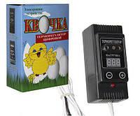 Цифровой терморегулятор Квочка ТРП-1 для инкубатора