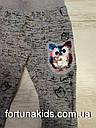 Трикотажные спортивные штаны для девочек Sincere 98-128 р.р., фото 4