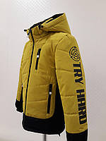 Детская демисезонная куртка для мальчика Самир горчичного цвета