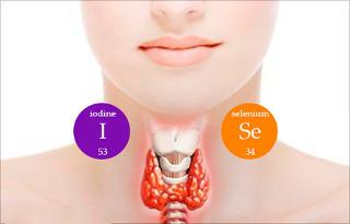 йод и селен для щитовидной железы