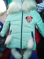 Зимняя куртка гном мята на девочку
