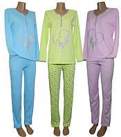 Легкие трикотажные пижамки с брюками серии Кошка для девушек и женщин от УКРТРИКОТАЖ!