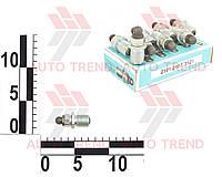 Болт регулировочный клапана ВАЗ 2101 с\о (комплект 8 шт.). 2101-1007075СБ