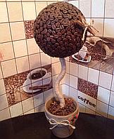 """Кофейное дерево """" Classik"""""""