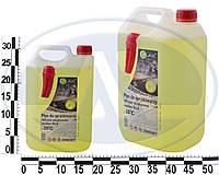 Омыватель стекла зимний PLAX c лейкой 5л (-20 С) WSPl+5L