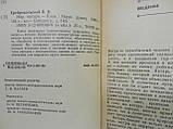 Сребродольский Б.И. Мир янтаря (б/у)., фото 6