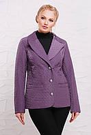 Пиджак, жакет женский демисезонный большой размер