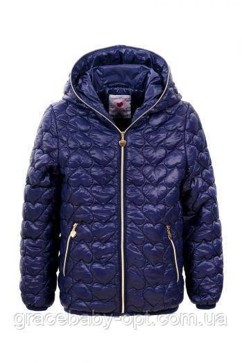 321c5a042009 Куртка для девочек оптом, Glo-Story, 92 98-128 см, № GMA-4407 ...