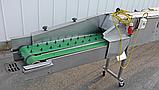 Лінія миття різання спаржі 120 кг/год Christiaens Agro, фото 4