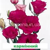 Еустома Маріачі F1 (колір на вибір) 100 шт., фото 6