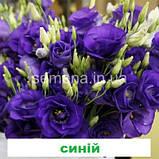 Еустома Маріачі F1 (колір на вибір) 100 шт., фото 7