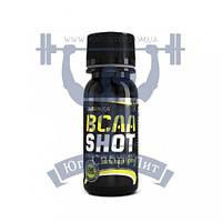BioTech BCAA Shot zero carb аргинин аминоксилота для тренировок спортивное питание
