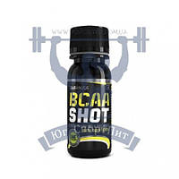 BioTech BCAA Shot zero carb аргинин аминоксилота для тренировок