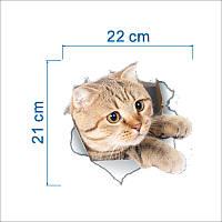 Наклейка стикер WC кот на унитаз,дверь 24см*23см