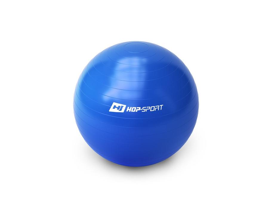 Фитбол Hop-Sport 65cm blue + насос для дома и спортзала , Львов