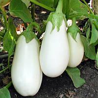 Семена белого баклажана