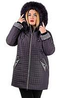Женское пальто из плащевой ткани сливовое Олеся(52-62)