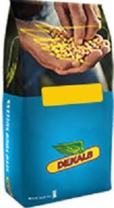Купити насіння кукурудзи ДКС 3476