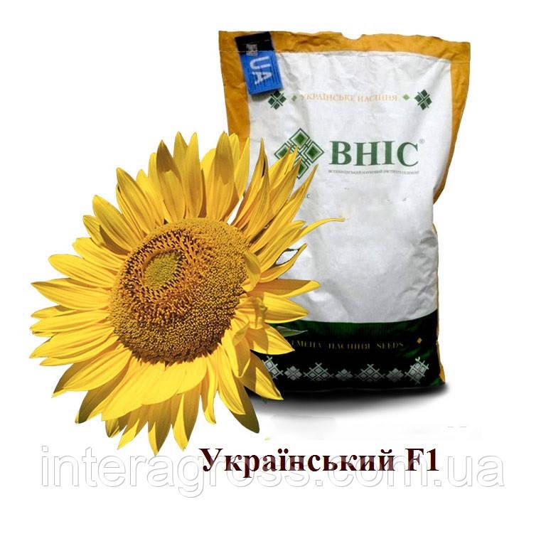 Купить Насіння соняшника Український Ф1
