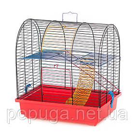 Клетка для грызунов, эмаль GRIM 2 InterZoo 36*24*38 см